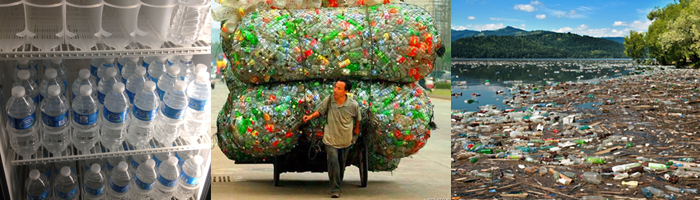 water_bottles_Sustainable_Sunday